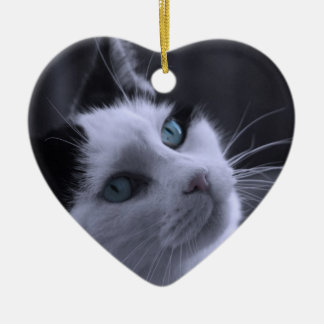 Sweet Kitty Ornament