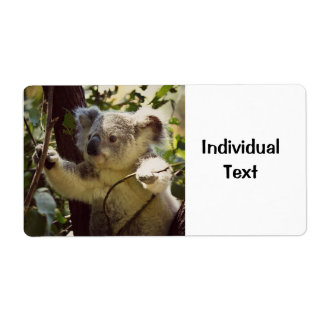 sweet koala 2b label