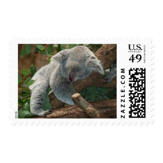 Sweet koala bear sleeping postage