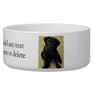 Sweet Lab Puppy Bowl