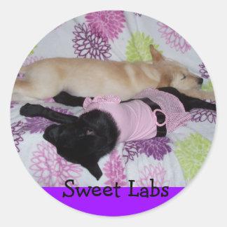 Sweet Labs Classic Round Sticker