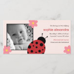 """Sweet Ladybug Baby Girl Birth Announcement<br><div class=""""desc"""">This Sweet Ladybug birth announcement is sure to melt your family and friends&#39; hearts as you introduce your precious little lady. Visit papergirlstore.com for more stylish styles.</div>"""
