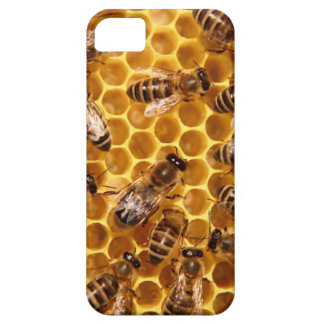 sweet like honey bees iphone case iPhone 5 covers