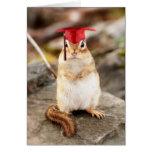 Sweet Little Chipmunk Graduate Greeting Card