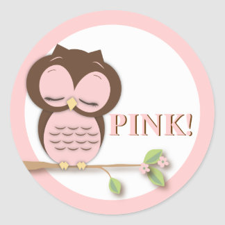 Sweet Little Girl Owl on a Branch Team PINK! Classic Round Sticker