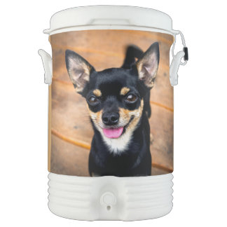 Sweet Little Puppy Chiwawa Dog Cooler