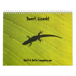 Sweet lizards calendar
