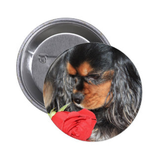 Sweet Love Cavalier King Charles Spaniel Pinback Button