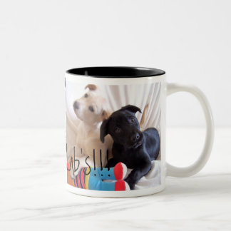 Sweet Loyal Labs Mug