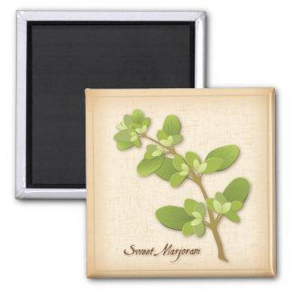 Sweet Marjoram Herb Magnet