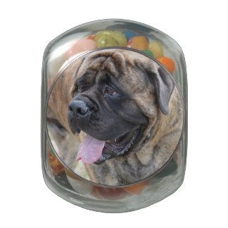 Sweet Mastiff Glass Jars