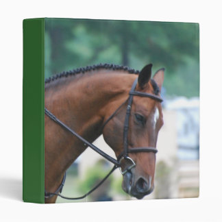 Sweet Morgan Horse Binder