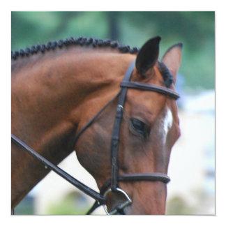 Sweet Morgan Horse 5.25x5.25 Square Paper Invitation Card