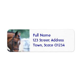 Sweet Morgan Horse Return Address Label