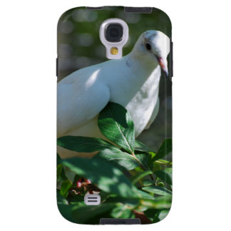 Sweet Mourning Dove Galaxy S4 Case