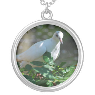 Sweet Mourning Dove Necklaces