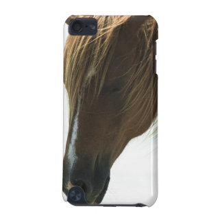 Sweet Mustang Horse iTouch Case iPod Touch (5th Generation) Cover
