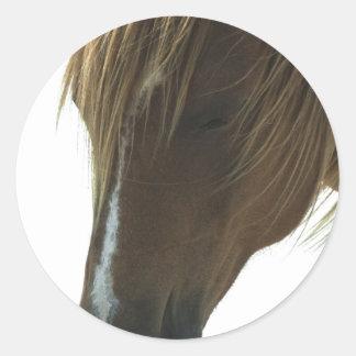 Sweet Mustang Horse Sticker