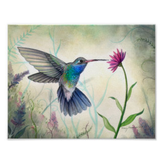 Sweet Nectar Hummingbird and Flower Watercolor Poster