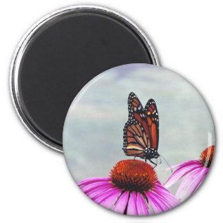 Sweet Nectar - magnet