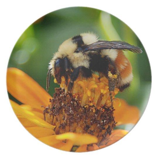 Sweet Nectar Plate