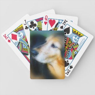 Sweet old dog playing cards