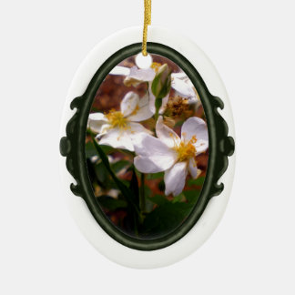 Sweet Oval Darlow's Enigma Rose Ornament