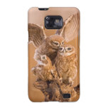 Sweet Owl Family Galaxy S2 Cases