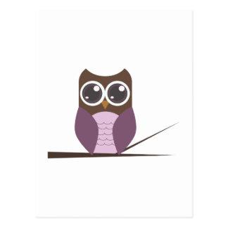 Sweet Owl on Branch Postcard