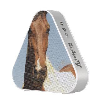 Sweet Paint Horse Bluetooth Speaker