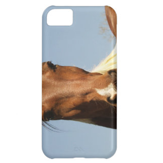 Sweet Paint Horse Case For iPhone 5C