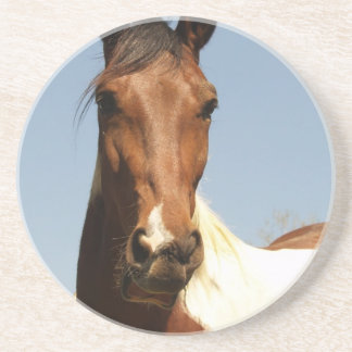 Sweet Paint Horse Drink Coasters