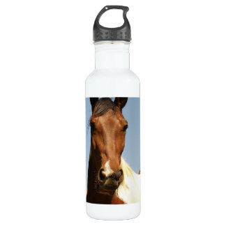 Sweet Paint Horse Water Bottle