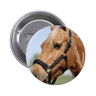 Sweet Palomino Button