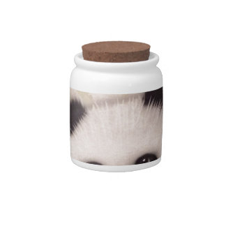 Sweet Panda Candy Jar