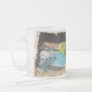 Sweet Parakeet Couple Frosted Glass Coffee Mug