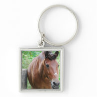 Sweet Paso Fino Horse Keychains