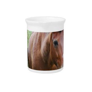 Sweet Paso Fino Horse Beverage Pitcher