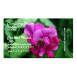 Sweet Pea Business Cards