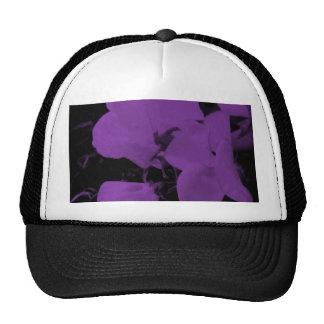 Sweet  Pea   Cap Trucker Hat