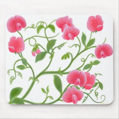 Sweetpea Flowers on Sweet Pea Flower Vine Mousepad P144745137330430985envq7 400 Jpg