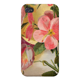 Sweet Pea Flowers iPhone 4/4S Covers