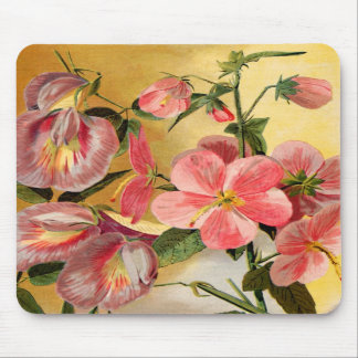 Sweet Pea Flowers Mousepads