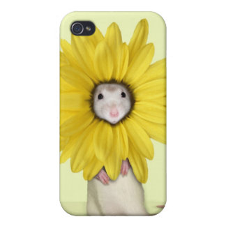 Sweet Pea in Bloom Case Case For iPhone 4