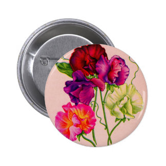 sweet pea in purple and pink button