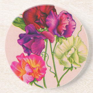 sweet pea in purple and pink coaster