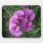 Sweet Pea Mouse Pad