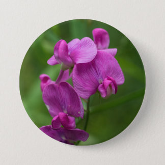 Sweet Pea Pretty Pink Wildflowers Floral Button