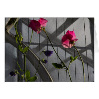 Sweet Peas in the Afternoon Card