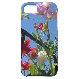 Sweet Peas Vibe iPhone 5 Case